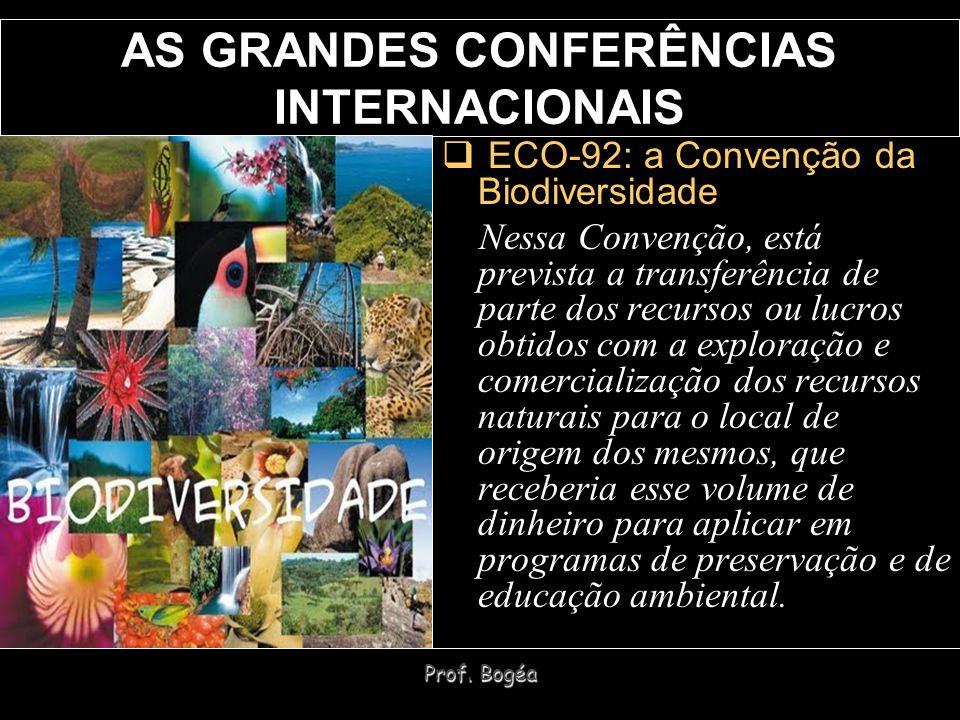 Prof. Bogéa AS GRANDES CONFERÊNCIAS INTERNACIONAIS ECO-92: a Convenção da Biodiversidade Nessa Convenção, está prevista a transferência de parte dos r