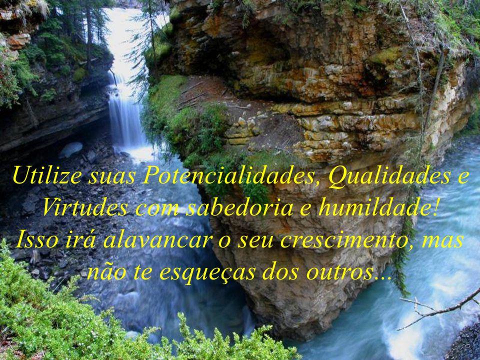 Utilize suas Potencialidades, Qualidades e Virtudes com sabedoria e humildade.