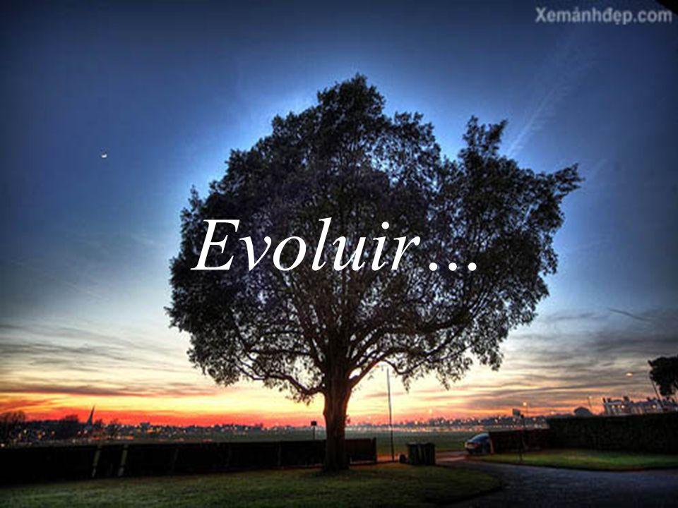 Evoluir…