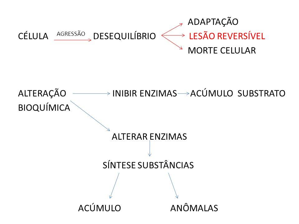 ADAPTAÇÃO CÉLULA DESEQUILÍBRIO LESÃO REVERSÍVEL MORTE CELULAR ALTERAÇÃO INIBIR ENZIMAS ACÚMULO SUBSTRATO BIOQUÍMICA ALTERAR ENZIMAS SÍNTESE SUBSTÂNCIAS ACÚMULO ANÔMALAS AGRESSÃO