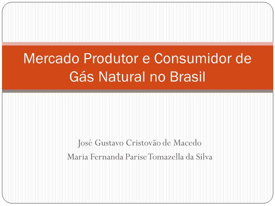 José Gustavo Cristovão de Macedo Maria Fernanda Parise Tomazella da Silva Mercado Produtor e Consumidor de Gás Natural no Brasil