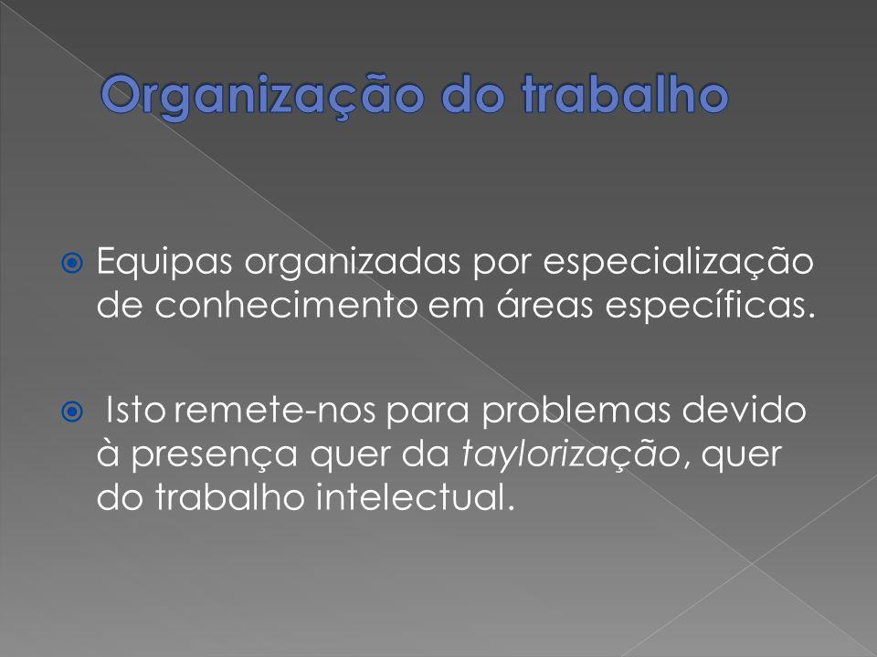 Equipas organizadas por especialização de conhecimento em áreas específicas. Isto remete-nos para problemas devido à presença quer da taylorização, qu