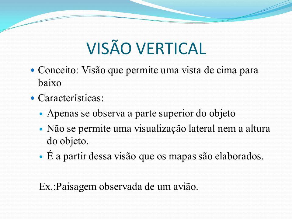 VISÃO VERTICAL Conceito: Visão que permite uma vista de cima para baixo Características: Apenas se observa a parte superior do objeto Não se permite uma visualização lateral nem a altura do objeto.