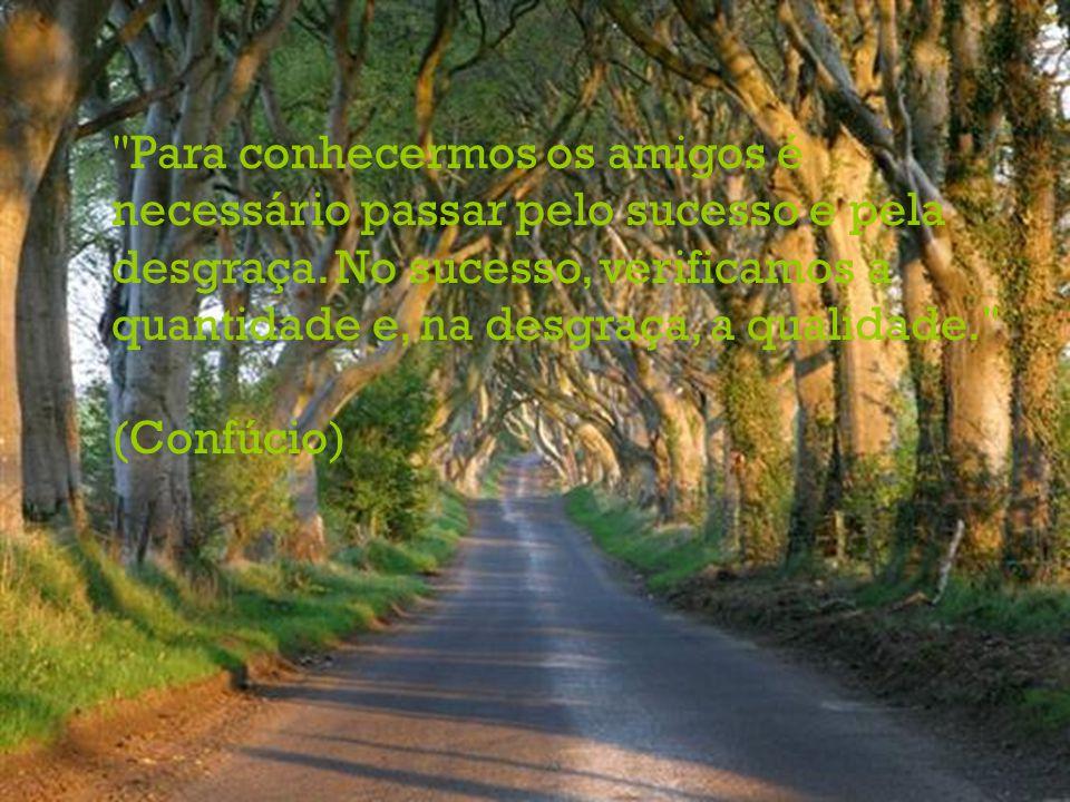 Para conhecermos os amigos é necessário passar pelo sucesso e pela desgraça.