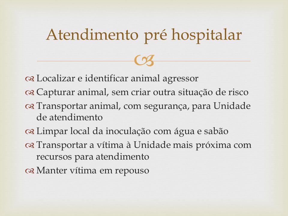 Localizar e identificar animal agressor Capturar animal, sem criar outra situação de risco Transportar animal, com segurança, para Unidade de atendime