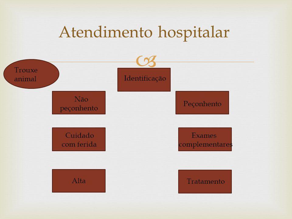 Atendimento hospitalar Identificação Não peçonhento Peçonhento Cuidado com ferida Alta Exames complementares Tratamento Trouxe animal