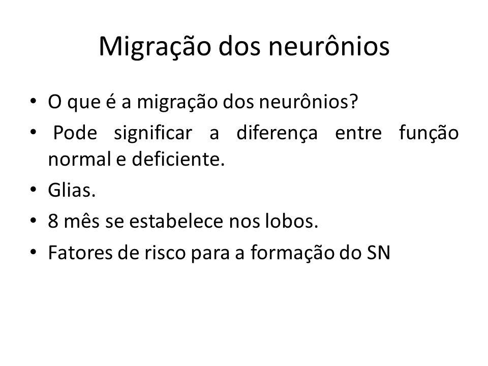 Migração dos neurônios O que é a migração dos neurônios? Pode significar a diferença entre função normal e deficiente. Glias. 8 mês se estabelece nos