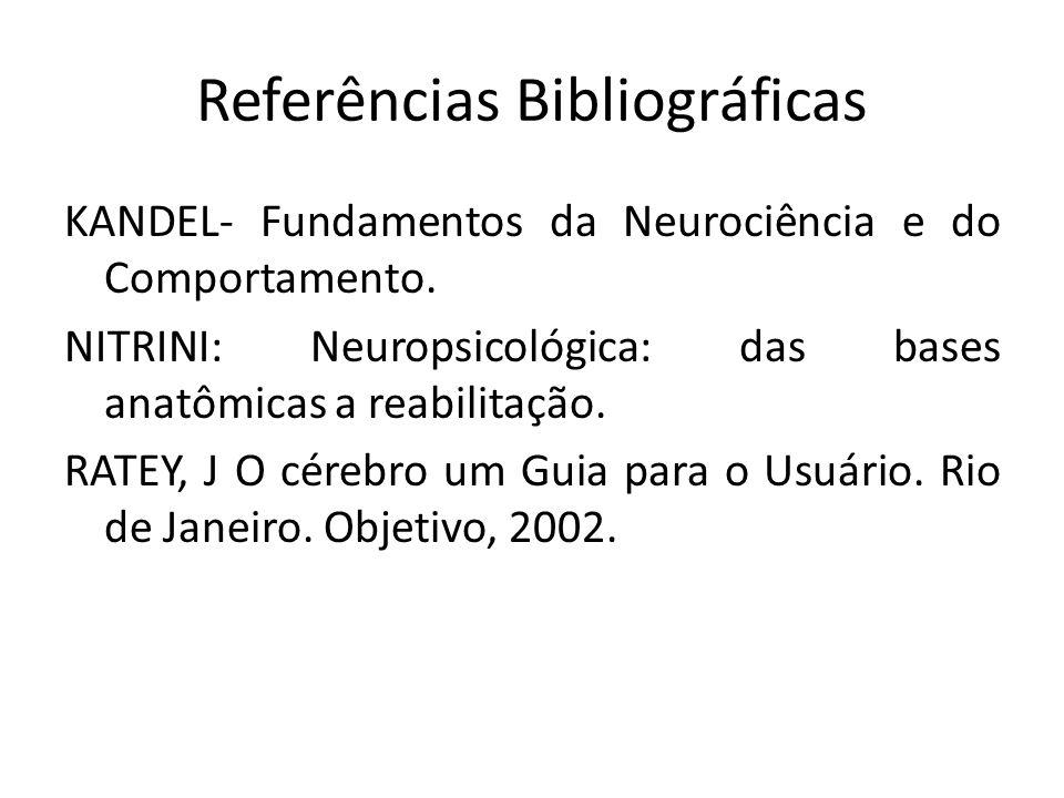 Referências Bibliográficas KANDEL- Fundamentos da Neurociência e do Comportamento. NITRINI: Neuropsicológica: das bases anatômicas a reabilitação. RAT