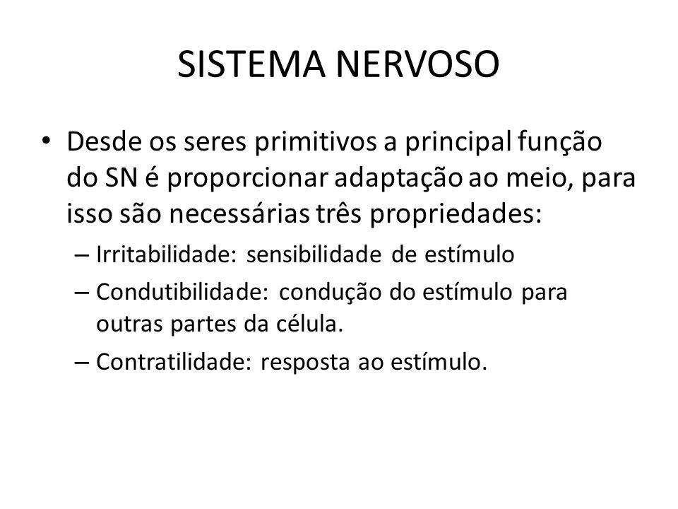 SISTEMA NERVOSO Desde os seres primitivos a principal função do SN é proporcionar adaptação ao meio, para isso são necessárias três propriedades: – Ir