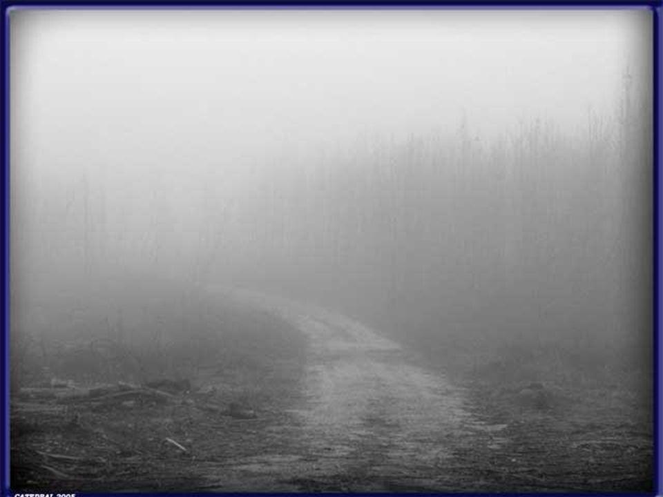 Nevoeiro de alta inversão Ex: Vales centrais da Califórnia durante o inverno e vales entre montanhas na Europa ocidental.