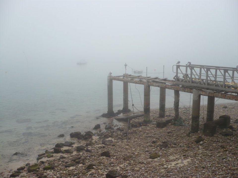 Nevoeiro de encosta Formam-se como resultado do resfriamento do ar por expansão adiabática à medida que se move para altitudes maiores.