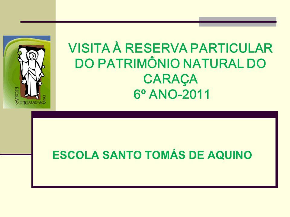 VISITA À RESERVA PARTICULAR DO PATRIMÔNIO NATURAL DO CARAÇA 6º ANO-2011 ESCOLA SANTO TOMÁS DE AQUINO