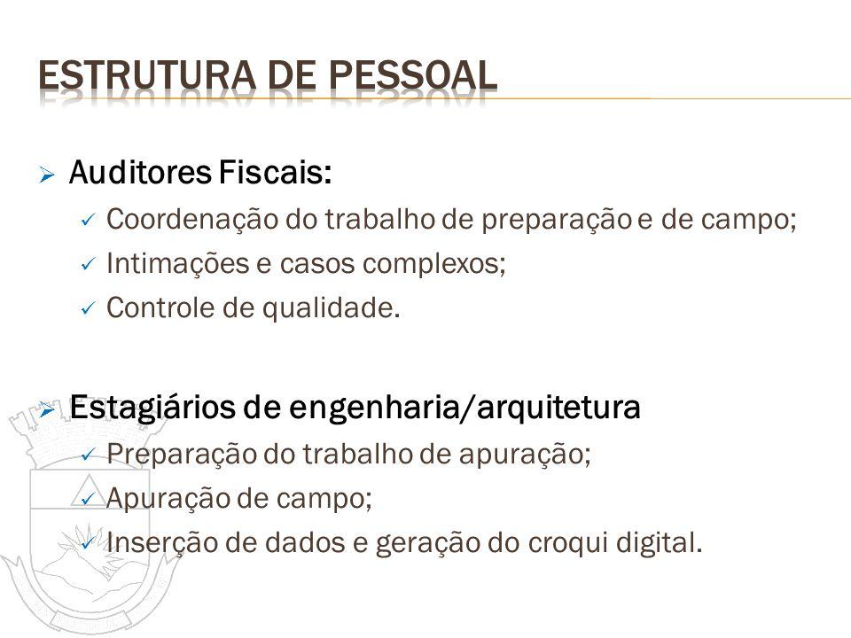 Auditores Fiscais: Coordenação do trabalho de preparação e de campo; Intimações e casos complexos; Controle de qualidade. Estagiários de engenharia/ar