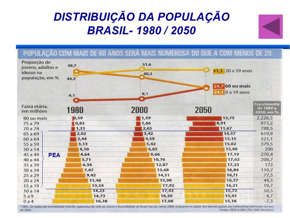 DISTRIBUIÇÃO DA POPULAÇÃO BRASIL- 1980 / 2050 PEA