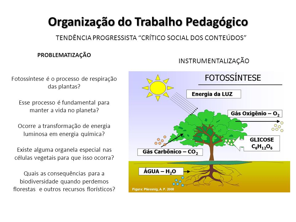 Organização do Trabalho Pedagógico TENDÊNCIA PROGRESSISTA CRÍTICO SOCIAL DOS CONTEÚDOS INSTRUMENTALIZAÇÃO PROBLEMATIZAÇÃO Fotossíntese é o processo de