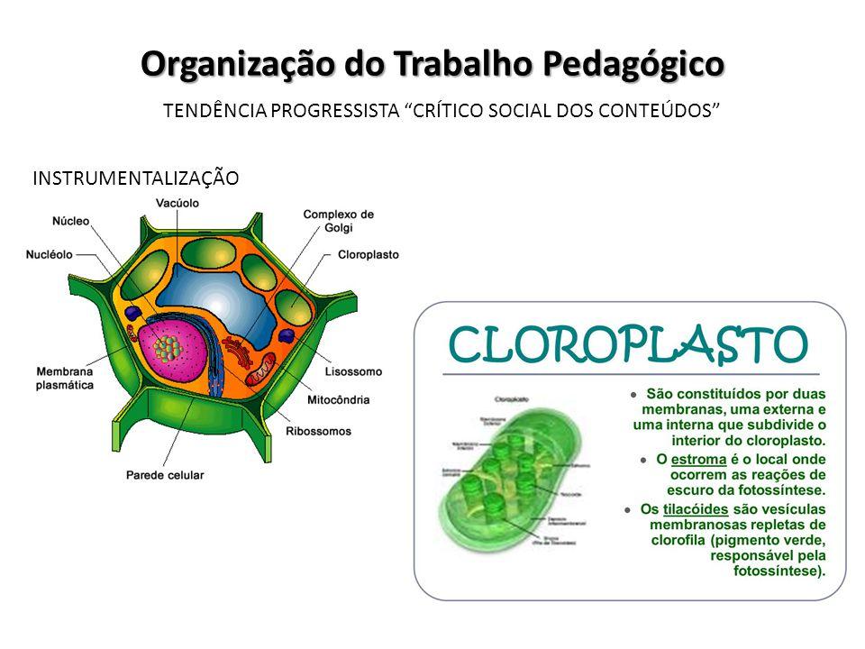 Organização do Trabalho Pedagógico TENDÊNCIA PROGRESSISTA CRÍTICO SOCIAL DOS CONTEÚDOS INSTRUMENTALIZAÇÃO