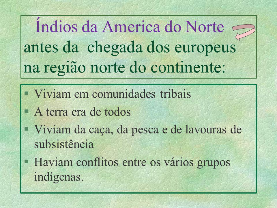 Índios da America do Norte antes da chegada dos europeus na região norte do continente: §Viviam em comunidades tribais §A terra era de todos §Viviam d