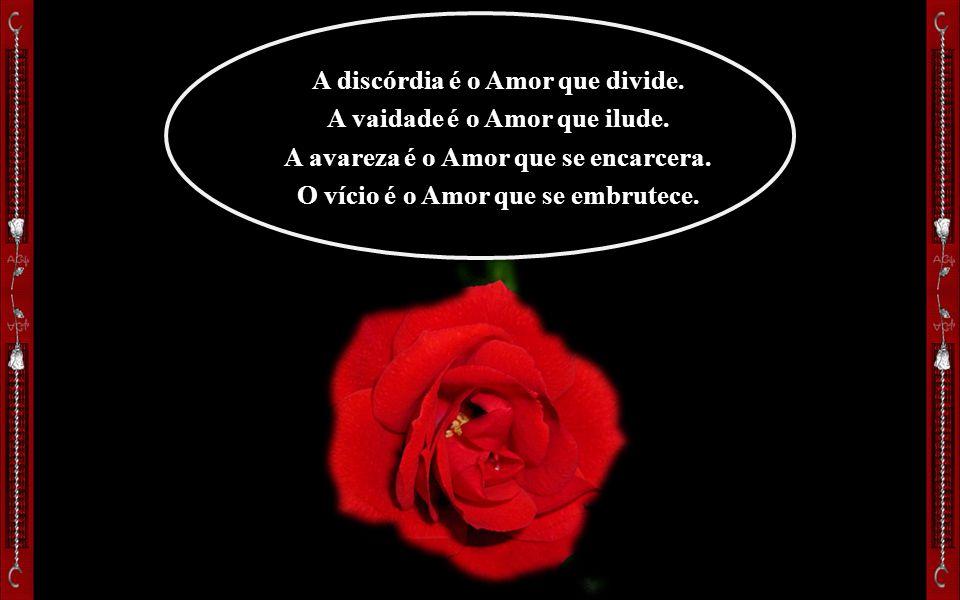 A discórdia é o Amor que divide.A vaidade é o Amor que ilude.
