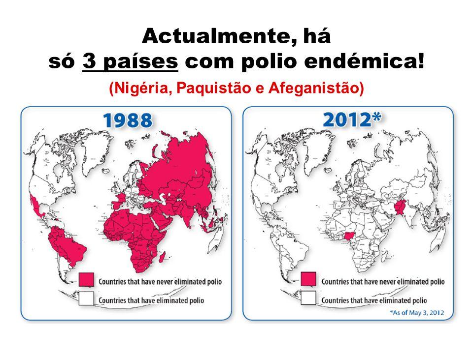 FOI O QUE SUCEDEU EM 2008! Países que reportaram virus de importação. Países com polio endémica.