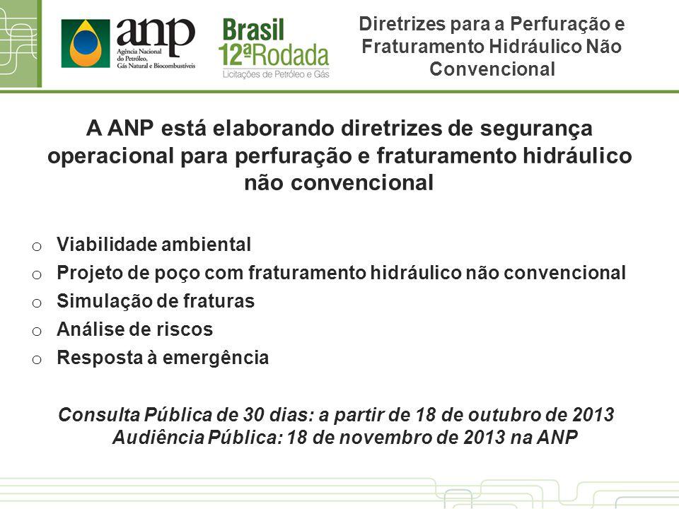 A ANP está elaborando diretrizes de segurança operacional para perfuração e fraturamento hidráulico não convencional o Viabilidade ambiental o Projeto