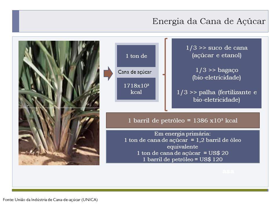 PROGRAMA PLACTED asa 1 ton de 1718x10³ kcal Cana de açúcar 1/3 >> suco de cana (açúcar e etanol) 1/3 >> bagaço (bio-eletricidade) 1/3 >> palha (fertilizante e bio-eletricidade) 1 barril de petróleo = 1386 x10³ kcal Em energia primária: 1 ton de cana de açúcar = 1,2 barril de óleo equivalente 1 ton de cana de açúcar = US$ 20 1 barril de petróleo = US$ 120 Energia da Cana de Açúcar Fonte: União da Indústria de Cana-de-açúcar (UNICA)