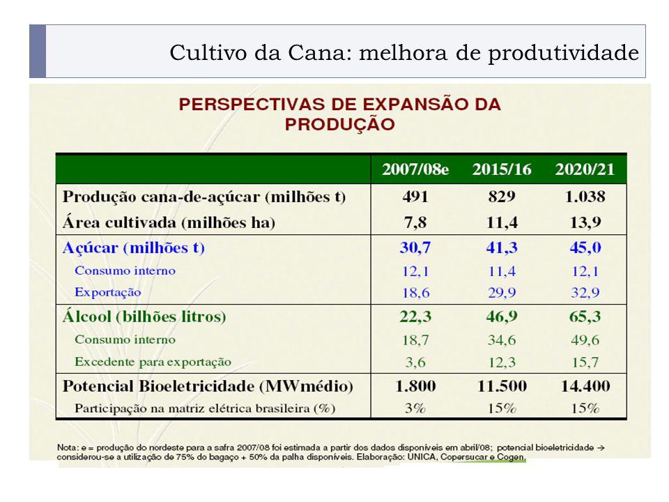 PROGRAMA PLACTED Cultivo da Cana: melhora de produtividade