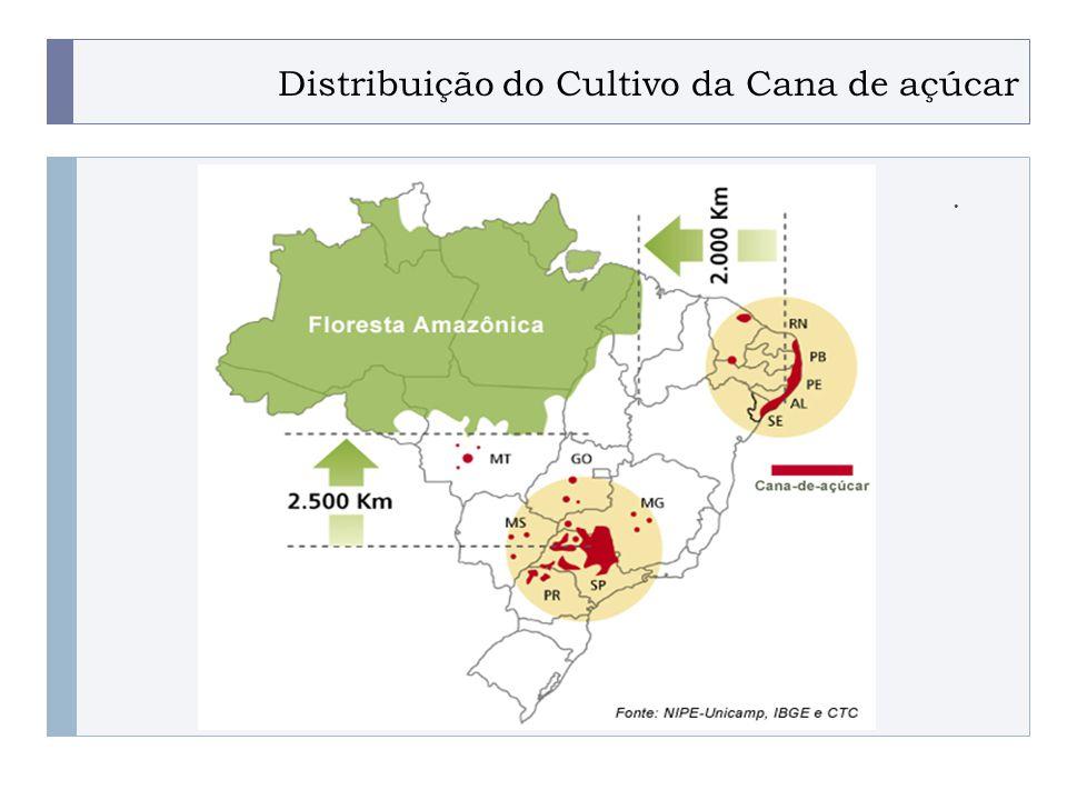 PROGRAMA PLACTED Distribuição do Cultivo da Cana de açúcar.