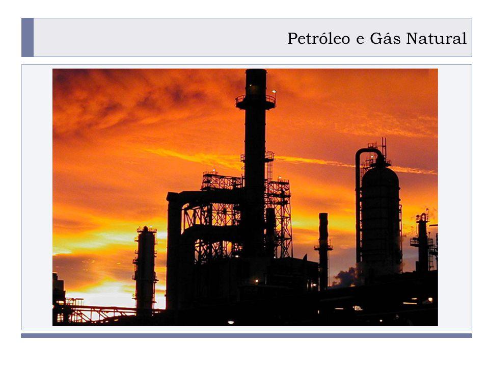 PROGRAMA PLACTED Petróleo e Gás Natural