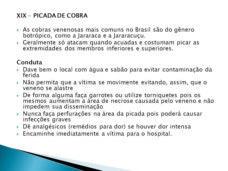 XIX - PICADA DE COBRA As cobras venenosas mais comuns no Brasil são do gênero botrópico, como a Jararaca e a Jararacuçu. Geralmente só atacam quando a
