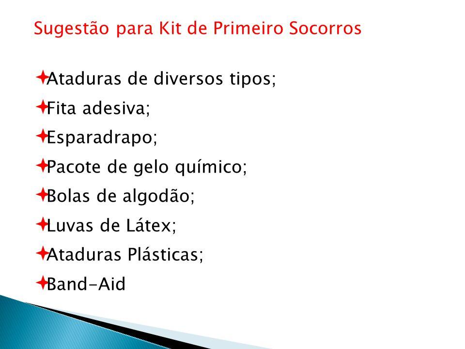 Sugestão para Kit de Primeiro Socorros Ataduras de diversos tipos; Fita adesiva; Esparadrapo; Pacote de gelo químico; Bolas de algodão; Luvas de Látex