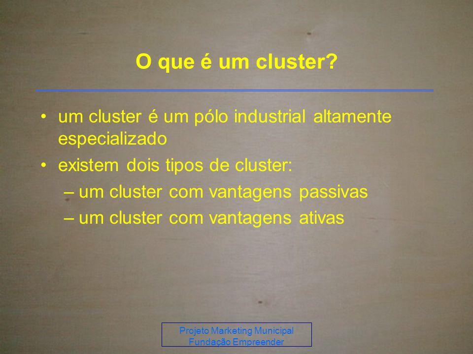 Projeto Marketing Municipal Fundação Empreender O que é um cluster.