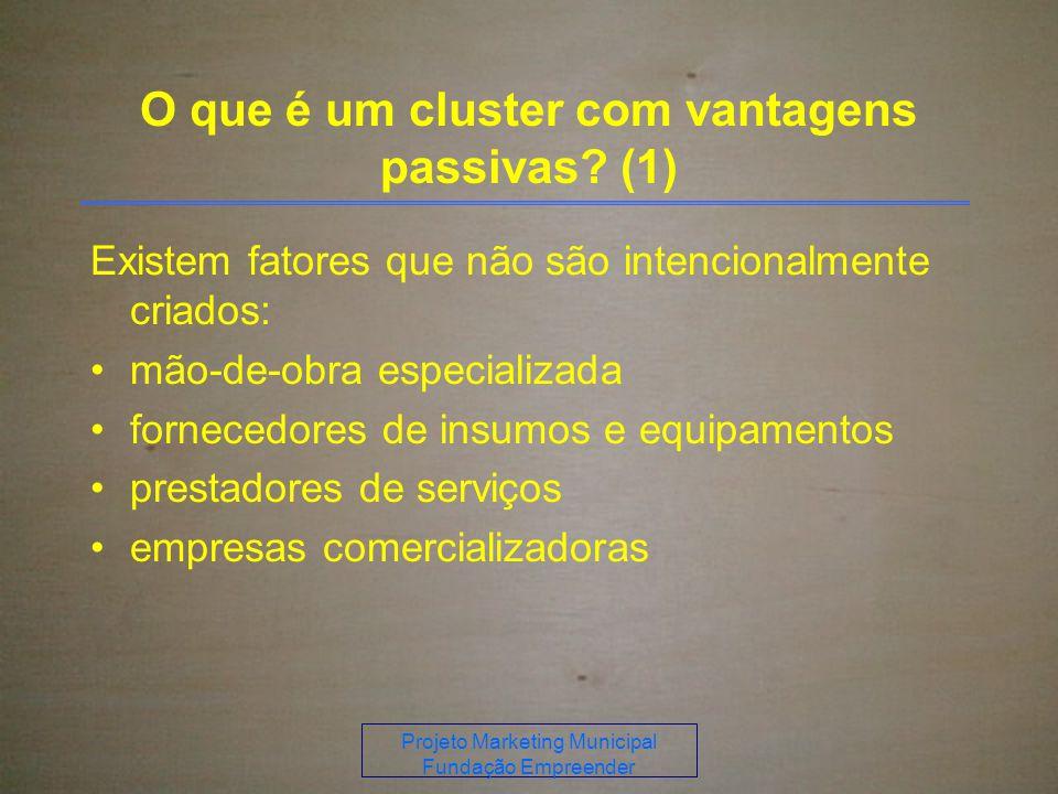 Projeto Marketing Municipal Fundação Empreender O que é um cluster com vantagens passivas.