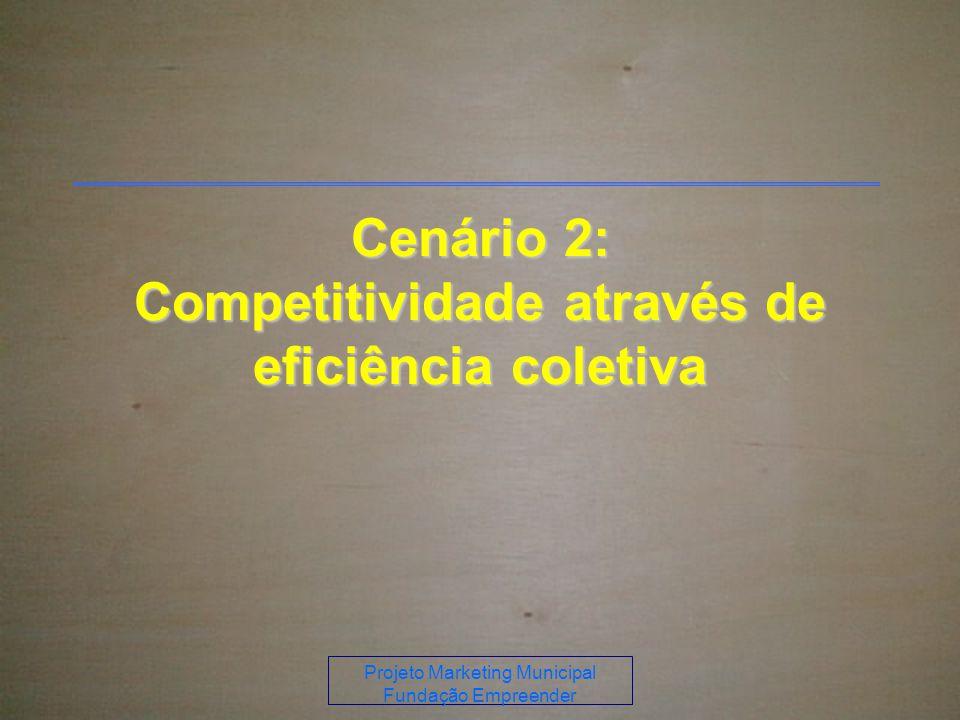 Projeto Marketing Municipal Fundação Empreender Cenário 2: Competitividade através de eficiência coletiva