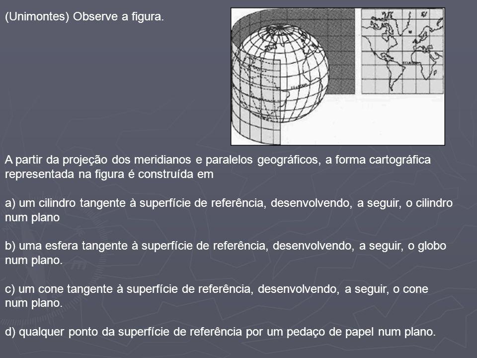 (Unimontes) Observe a figura. A partir da projeção dos meridianos e paralelos geográficos, a forma cartográfica representada na figura é construída em