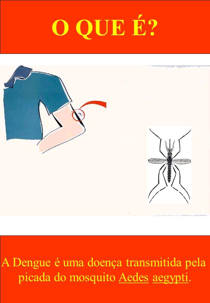 POR QUE O AEDES PICA AS PESSOAS.Quem pica as pessoas é a fêmea do Aedes.