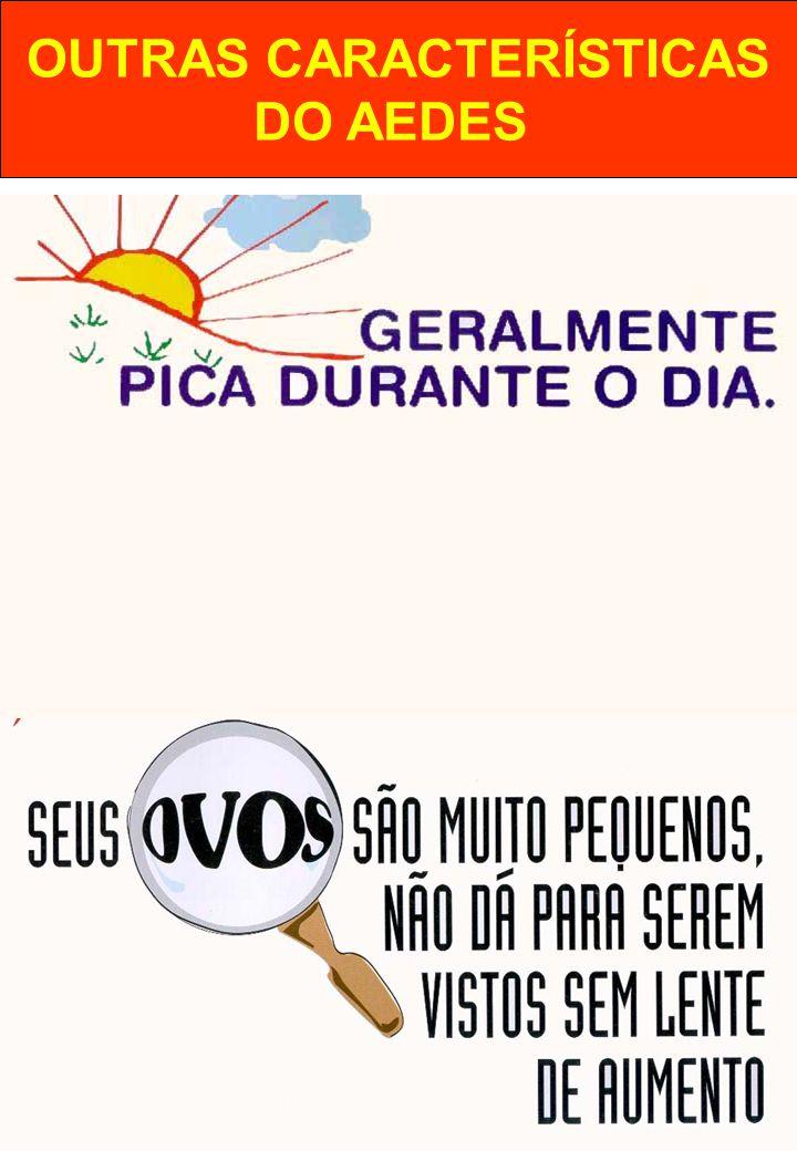 OUTRAS CARACTERÍSTICAS DO AEDES