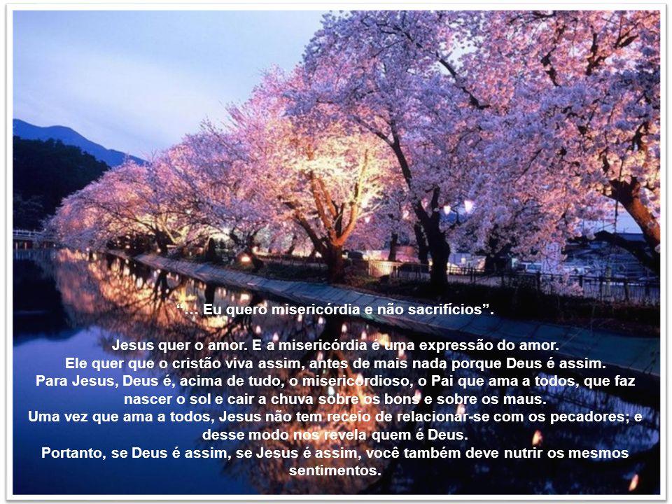 Para cada cristão o amor é o programa de sua vida, a lei fundamental de suas ações, o critério de seu comportamento. O amor deve prevalecer sempre sob