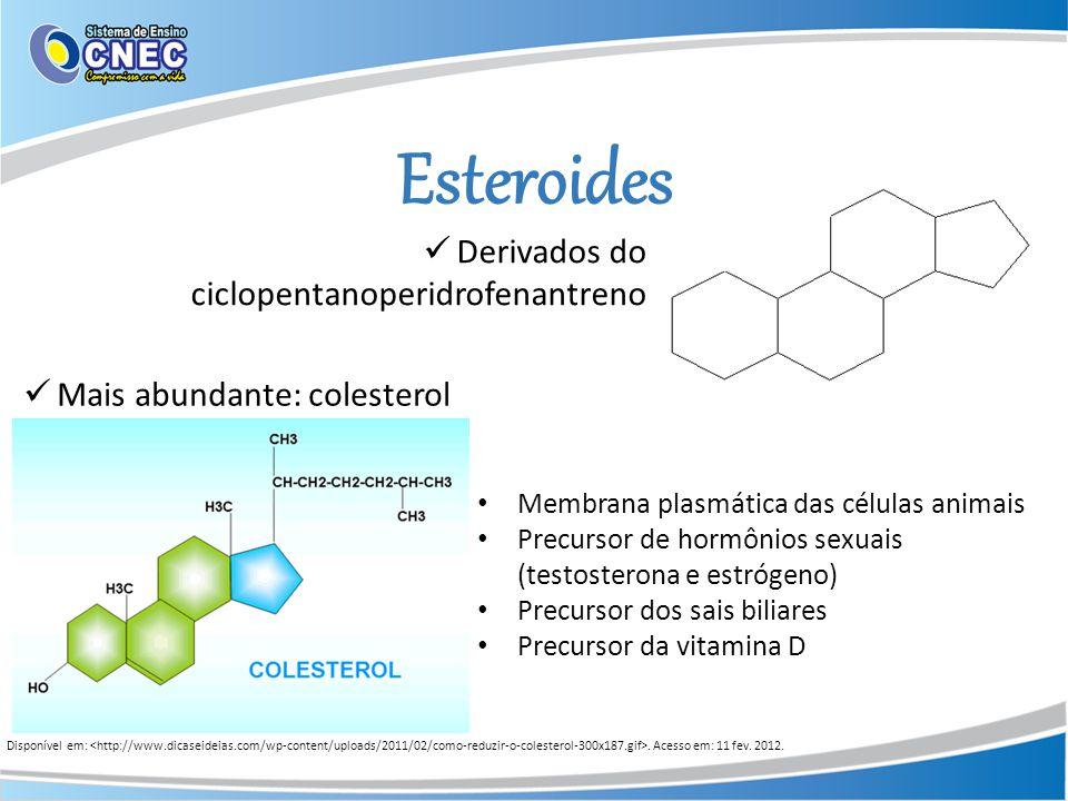Esteroides Disponível em:. Acesso em: 11 fev. 2012. Derivados do ciclopentanoperidrofenantreno Mais abundante: colesterol Membrana plasmática das célu