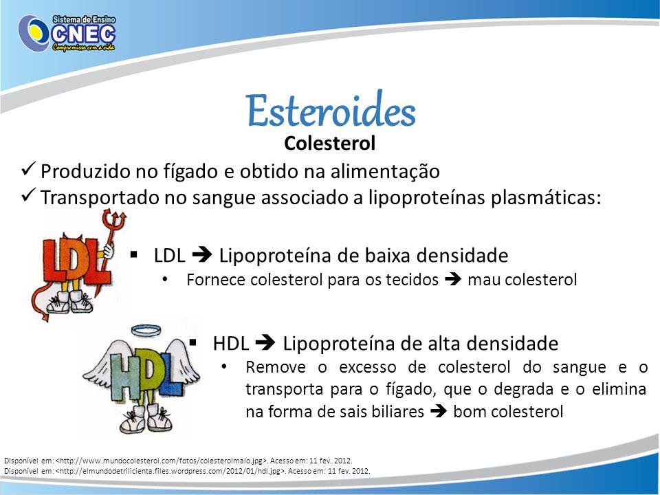 Esteroides Disponível em:. Acesso em: 11 fev. 2012. Colesterol Produzido no fígado e obtido na alimentação Transportado no sangue associado a lipoprot