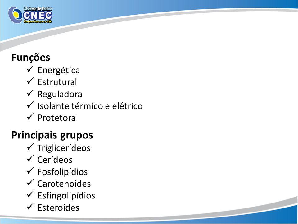 Funções Energética Estrutural Reguladora Isolante térmico e elétrico Protetora Principais grupos Triglicerídeos Cerídeos Fosfolipídios Carotenoides Es