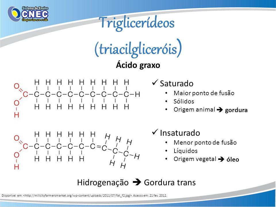 Triglicerídeos (triacilgliceróis ) Ácido graxo Saturado Maior ponto de fusão Sólidos Origem animal Insaturado Menor ponto de fusão Líquidos Origem veg