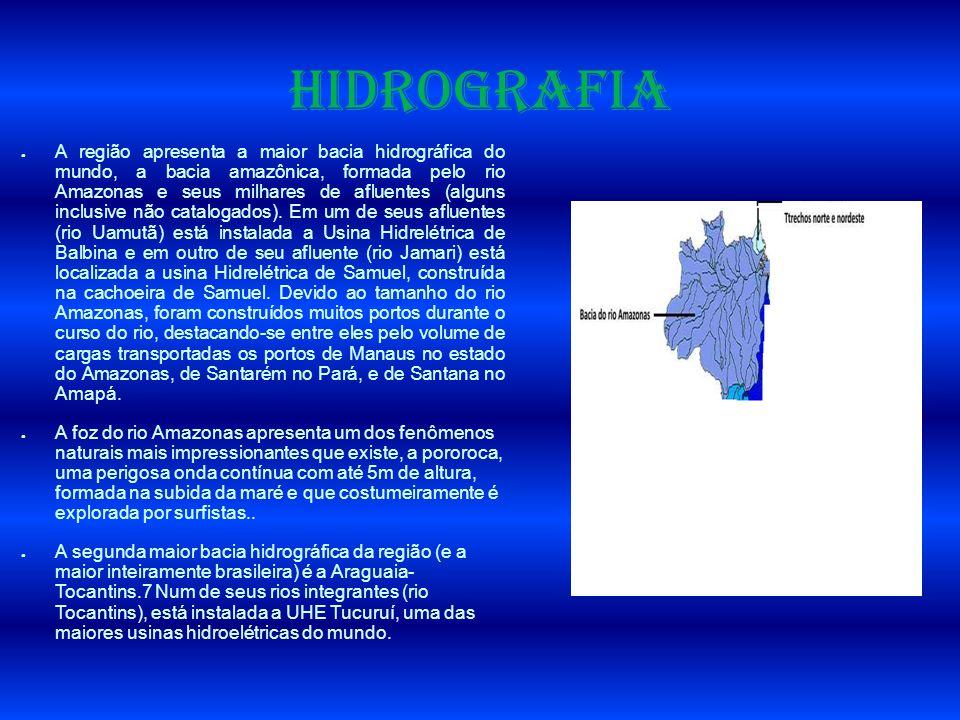 Hidrografia A região apresenta a maior bacia hidrográfica do mundo, a bacia amazônica, formada pelo rio Amazonas e seus milhares de afluentes (alguns