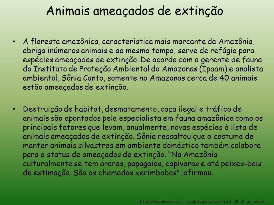 Animais ameaçados de extinção A floresta amazônica, característica mais marcante da Amazônia, abriga inúmeros animais e ao mesmo tempo, serve de refúg