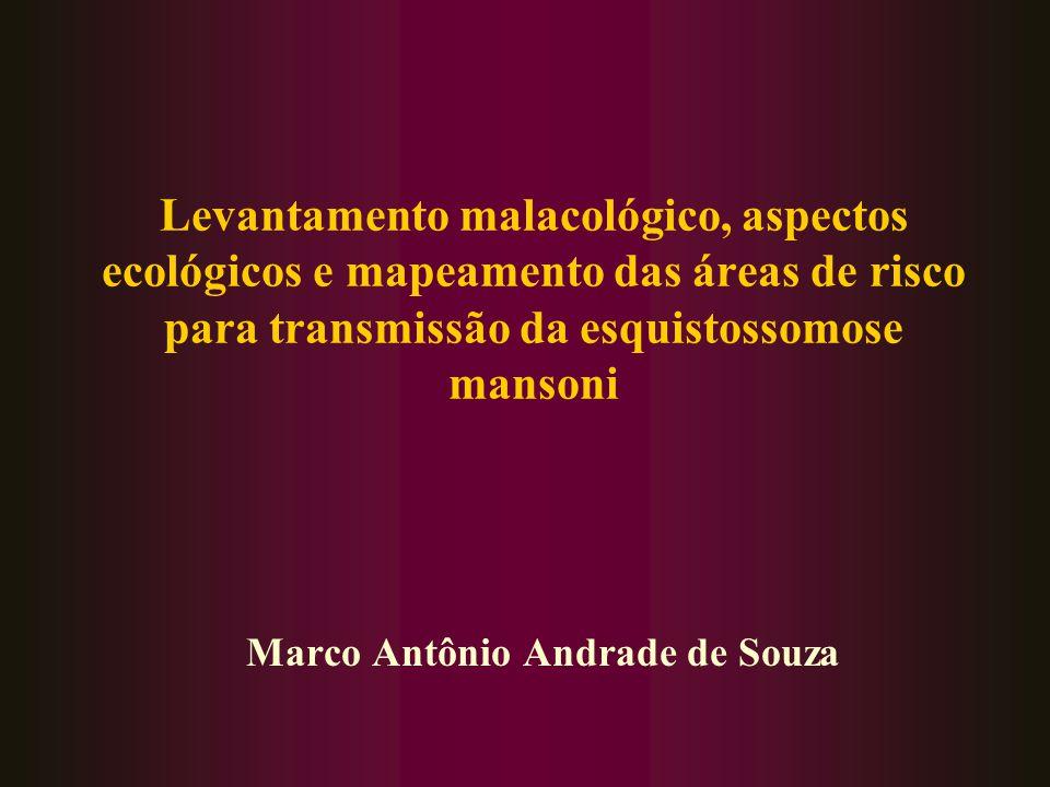 Levantamento malacológico, aspectos ecológicos e mapeamento das áreas de risco para transmissão da esquistossomose mansoni Marco Antônio Andrade de So