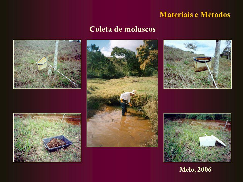 Coleta de moluscos Materiais e Métodos Melo, 2006