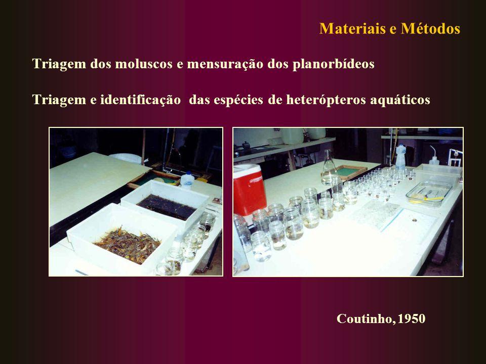 Triagem dos moluscos e mensuração dos planorbídeos Triagem e identificação das espécies de heterópteros aquáticos Materiais e Métodos Coutinho, 1950