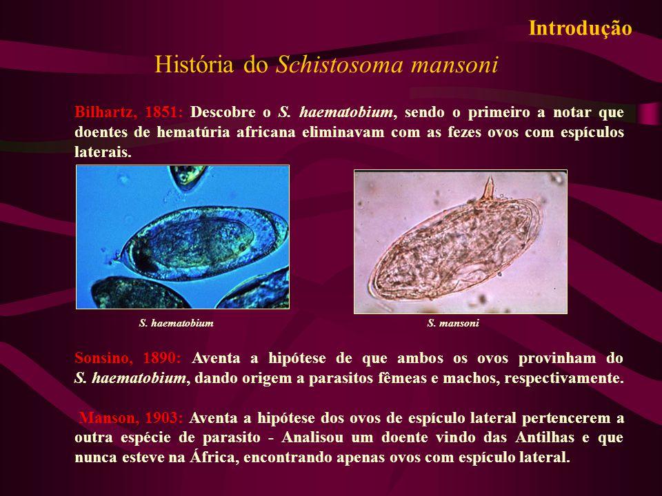 História do Schistosoma mansoni Bilhartz, 1851: Descobre o S. haematobium, sendo o primeiro a notar que doentes de hematúria africana eliminavam com a