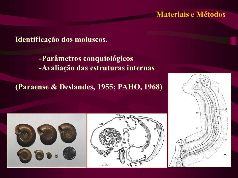 Identificação dos moluscos. -Parâmetros conquiológicos -Avaliação das estruturas internas (Paraense & Deslandes, 1955; PAHO, 1968) Materiais e Métodos
