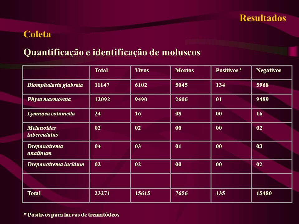TotalVivosMortosPositivos *Negativos Biomphalaria glabrata11147610250451345968 Physa marmorata1209294902606019489 Lymnaea columella2416080016 Melanoid
