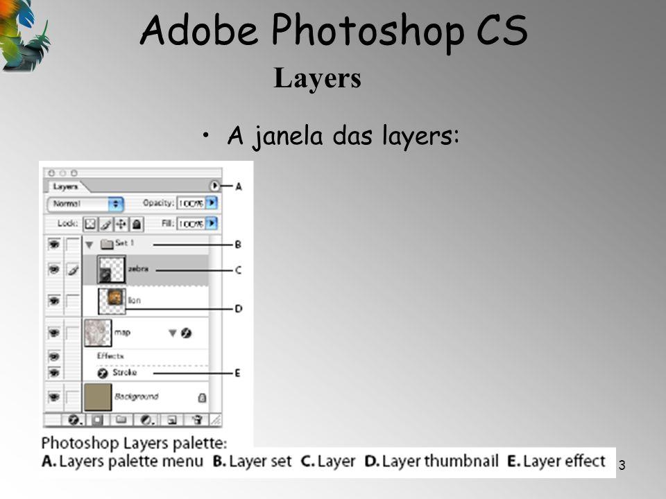 Adobe Photoshop CS Layers 4 A Janela Layers possui os seguintes componentes: Opacity (Opacidade) -controla o grau de transparência da layer; Fill – Controla o grau de tonalidade das cores na layer; Lock - Esta ferramenta é utilizada para bloquear algumas opções da layer: 1)– a transparência, 2)– o pincel ou as ferramentas de desenho e pintura, 3)– a posição da layer, 4)– todas as opções.